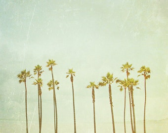 BUY 2 GET 1 FREE Nature Photo, Palm Trees, California Photography, Retro Inspired, Sky, Blue, Green, Wall Decor - Palm Tree Dreams