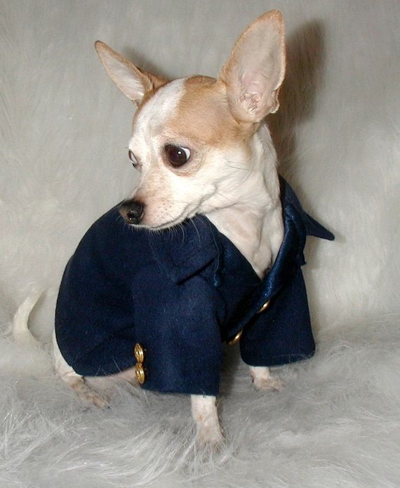 Navy Peacoat for your Little Man Dog