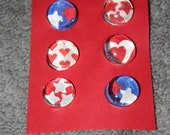 Heart and Star Glass Magnets - Love for your Pet Superstar