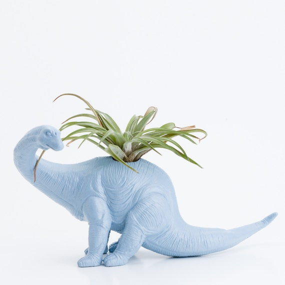 RESERVED For Mai Two Dinosaur Planters Room Decor, Mint green and Light Blue, Tillandsia Pot