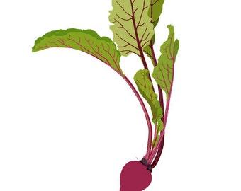Kitchen art work, Beet Art Print, Kitchen Decoration, Illustration,  Art for Home, Gift for Mother Wife, vegetable Drawing - Beet