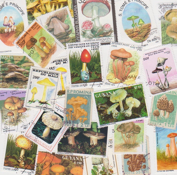 Lot of Mixed Worldwide Mushroom Fungi Toadstool Postage Stamps for Altered Arts Collage Destash
