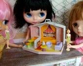 Blythe's very own Barbie Doll And Barbie House Case