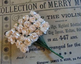 Pale Blush Creamy Roses Dozen Lot