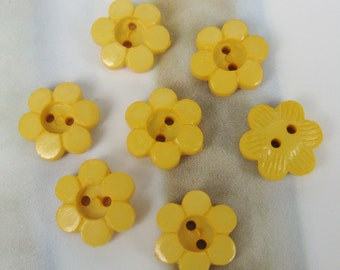 Petel button - 12 pcs