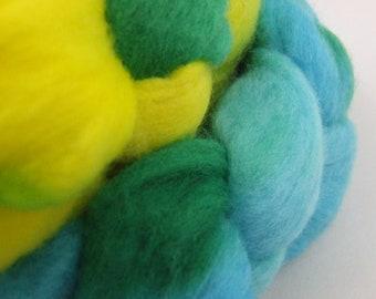 ZUCCHINI & SUMMER SQUASH - 4 oz Hand-Painted Merino Top