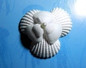 Seashell Corsage or Boutonniere Seaflower