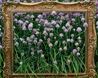 50 percent discount on this gorgeous ornate vintage wooden frame, Home Decor, picture frames, coolvintage, hang a picture, looks great s1/2L