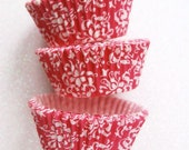 White and Hot Pink Damask Cupcake Liners Standard Size 50 per pack