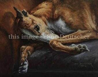 Greyhound 11x14 print