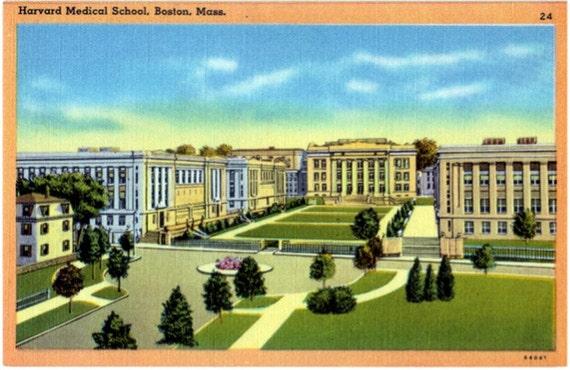 Vintage Boston Postcard - Harvard Medical School  (Unused)
