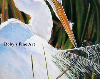 "Great Egret Art Print ""Sun Bath"" by Roby Baer PSA"