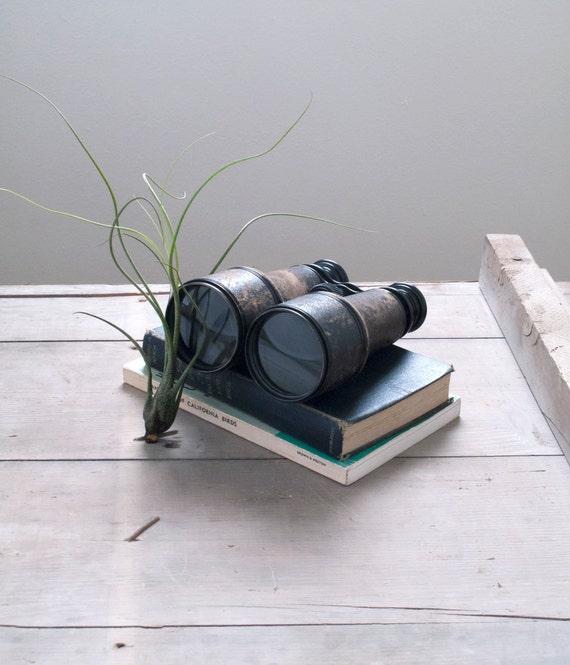 vintage french military binoculars