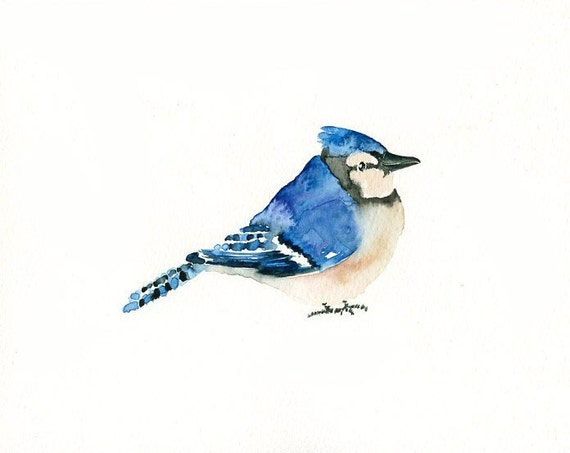 BLUEJAY by DIMDI Original watercolor painting 10X8inch