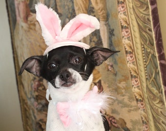 Easter bunny hat with a bow    for your pet