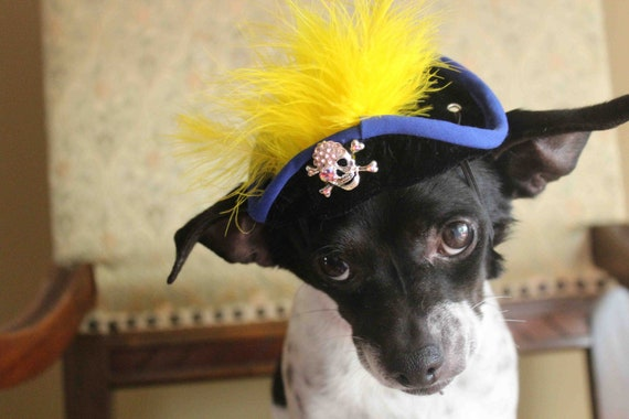 Pirate hat for dog or cat