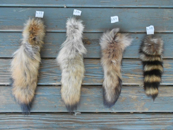 Large Tanuki or Finn Coon Tail- Soft Tanned- Natural Real Fur Lot No L27