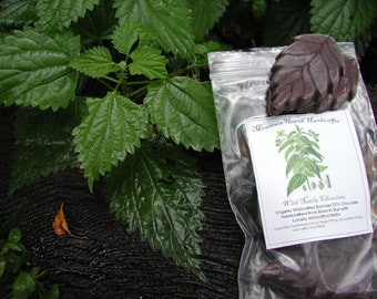Wild Nettle Chocolates