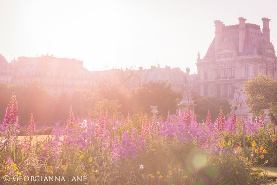 Paris Photography, Sunrise in The Tuileries, Flower Garden, French Fine Art Travel Photograph, Wall Decor