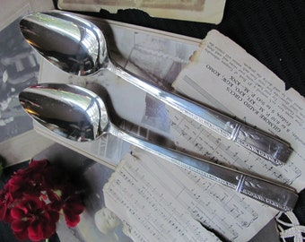 Silverware - Grenoble Pattern - Set of 2 Silver Plate Serving Spoons MINT