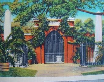 Vintage 1940s Unused Linen Postcard- Washingtons Tomb, Washington DC- Excellent Condition