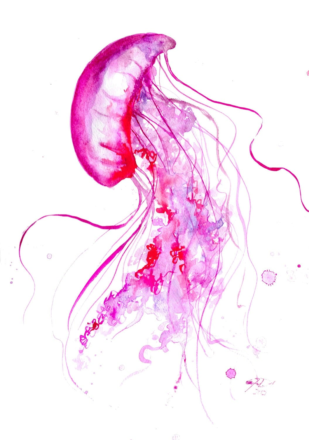 Watercolor jellyfish series by jessica durrant print from for Jelly fish painting