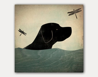 Summer Swim Black Dog Labrador Retriever  Stretched Canvas Wall Art on inch canvas