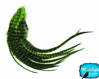 Real Hair Feathers, 1 Dozen - MEDIUM KELLY GREEN Grizzly Rooster Hair Extension Feathers: 622