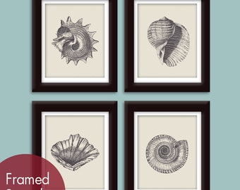 Underwater Sea Shell Collection (Series A) Set of 4 - Art Prints - Featured in Charcoal and Soft French Grey