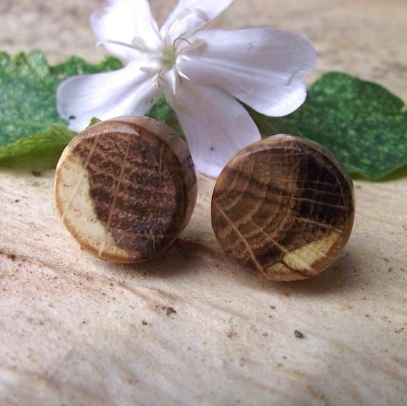 RESERVED - Rustic Oak Wood Stud Earrings - Round Wooden Post Earrings Handmade from Oak Wood Tree Branch - Natural Wood Jewelry gift idea