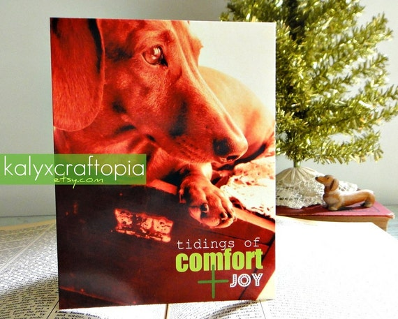 Set of 5 - Tidings of Comfort and Joy Christmas Dachshund Cards