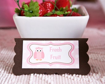 Owl Theme Food Tents - Menu Cards - Place Cards - Food Signs - Owl Party & Shower Decorations in Pink and Brown (6)