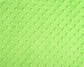 SALE: Light Green Dimple Dot Minky, 1 Yard
