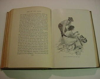 Son of the Wind Lucia Chamberlain Antique Illustrated Western Romance Book 1910