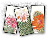 Cactus Vintage 1 x 2 Inch Rectangular Images Digital Collage Sheet Download and Print