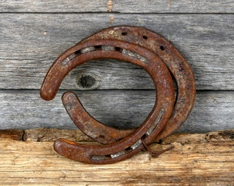 Popular items for horses on etsy for Where to buy horseshoes for crafts