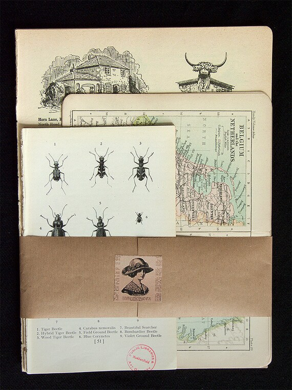 Vintage paper pack 30 vintage pages atlas gazetteer maps insects archaeology for altered art, collage, decoupage, mixed media art etc.