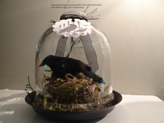Quoth The Raven-Glass Cloche with Raven & Birds Nest