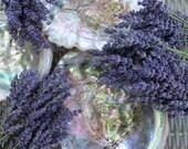 Dried Lavender Bouquets- 3 Bouquets