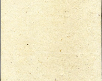 """Cardstock Seed Paper Heavy weight (60lb.) 8.5"""" x 11"""" pack of 10 handmade paper sheets"""