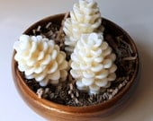 Pinecone organic soap white - HancoxHomestead