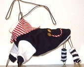 Salty Dog Pirate Costume for small breed dog.