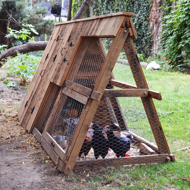 Домик для цыплят своими руками фото