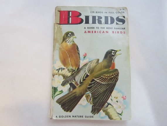 antique pocket sized AMERICAN BIRD book - a Golden Guide -  circa 1956