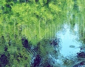 Fine Art Photography, Reflections and Ripples, Green Trees, Cool Blue Water, 16 x 24, Shadows, Mysterious, Peaceful Home Decor, Monetesque