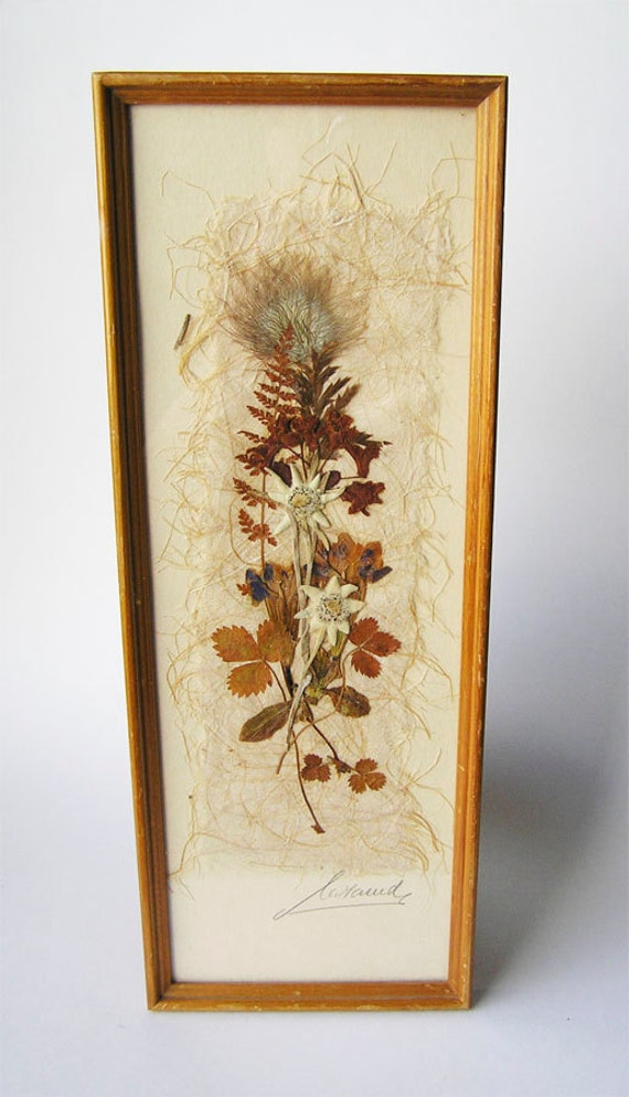 Framed Pressed Wild Flowers By Icondesign On Etsy