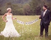 Just Married Banner: Rectangle