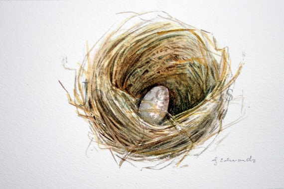 Nest with one egg- Sparrow - Original watercolor - Nightly Study 403