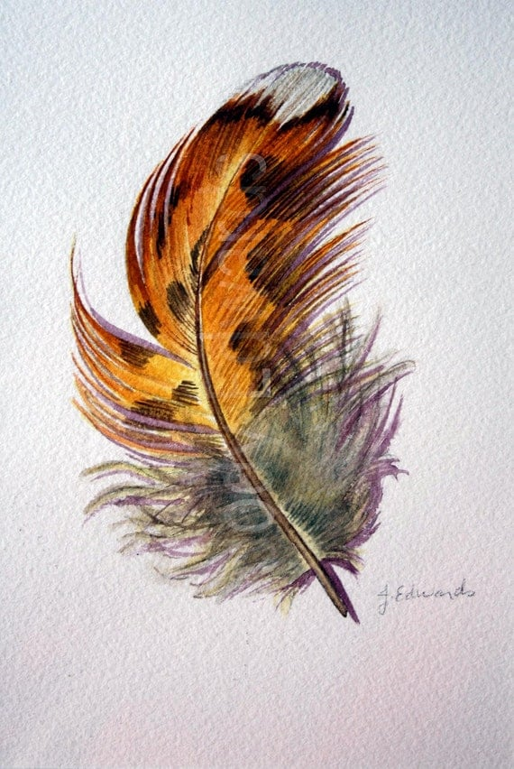 Grouse Feather Study - Original watercolor study 412