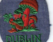 Dublin  Ireland leprechaun Mushroom Lucky Vintage Sewing Patch Applique 1970's
